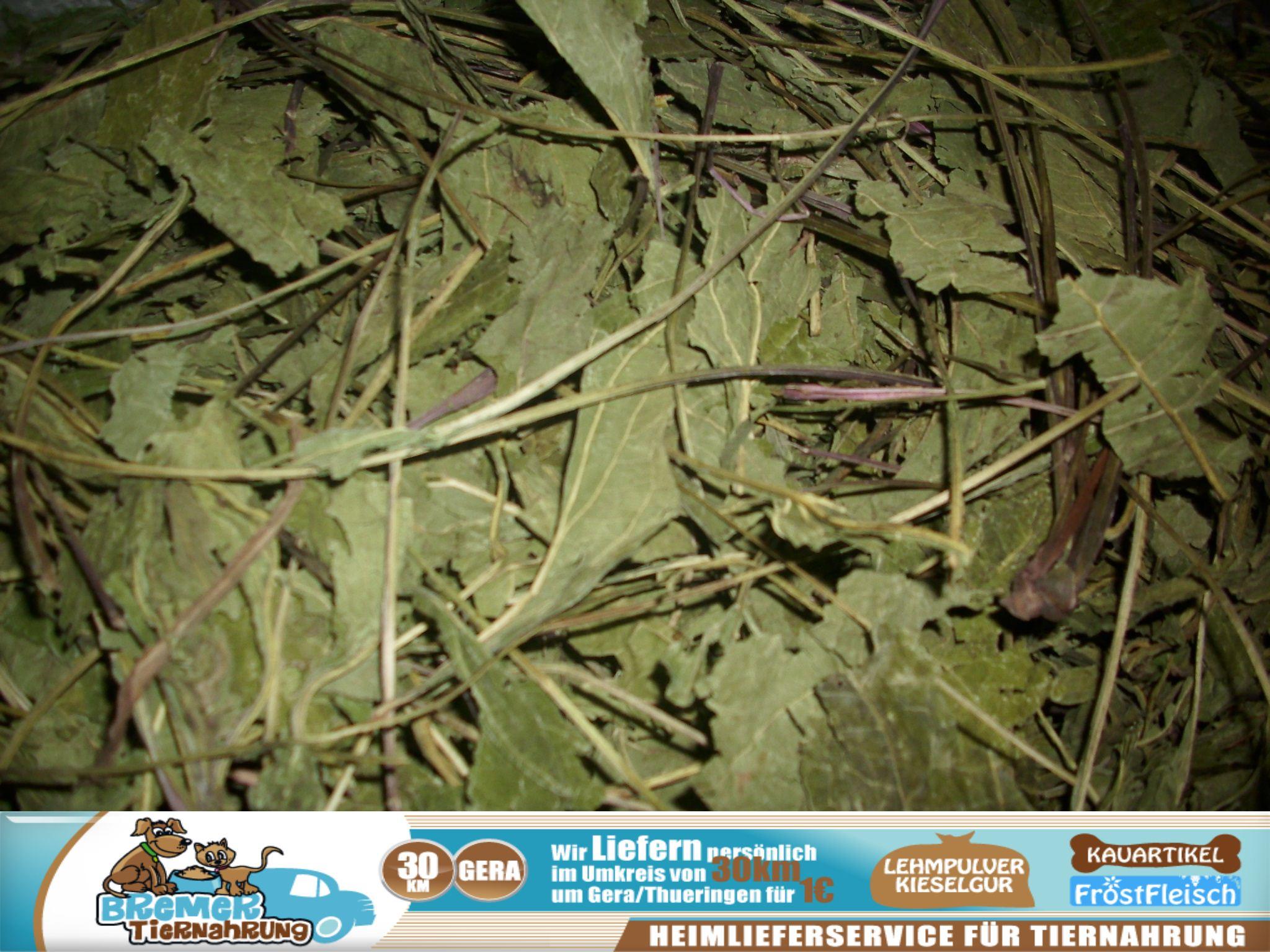 tierfutterladen gera 1kg sonnenhut echinacea bl tter gegen bronchitis erk ltung und husten. Black Bedroom Furniture Sets. Home Design Ideas